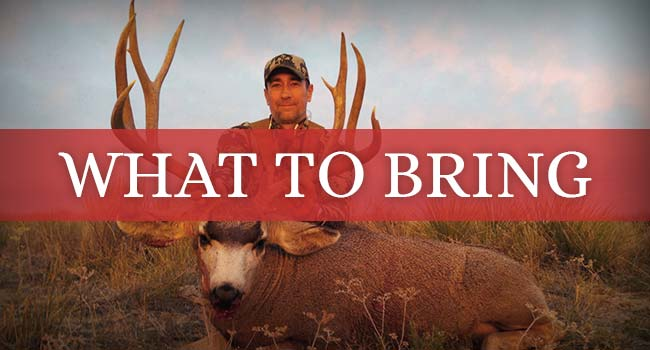 New Mexico Hunting Lodge   Outfitter in New Mexico