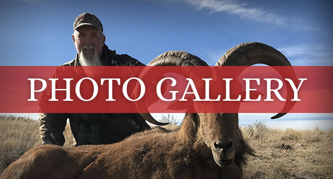Ridgeline Outfitters Photo Galleries