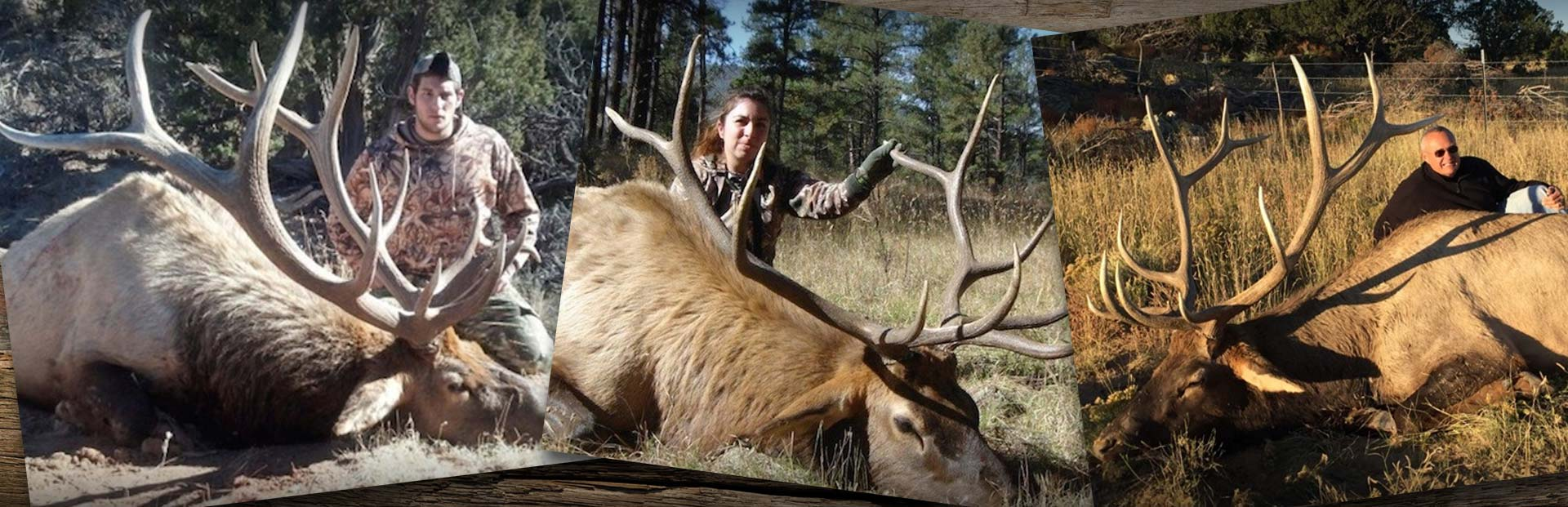 Trophy New Mexico Elk Hunting